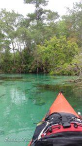 weeki wachee springs kayaking ©2019 All rights Reserved