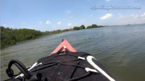 kayaking caladesi island dunedin fl ©2019 All rights Reserved