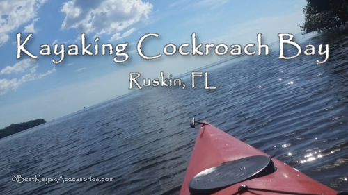 Kayaking Cockroach Bay Ruskin, FL  Tampa Bay Area